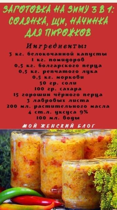 Заготовка на зиму 3 в 1: солянка, щи, начинка для пирожков