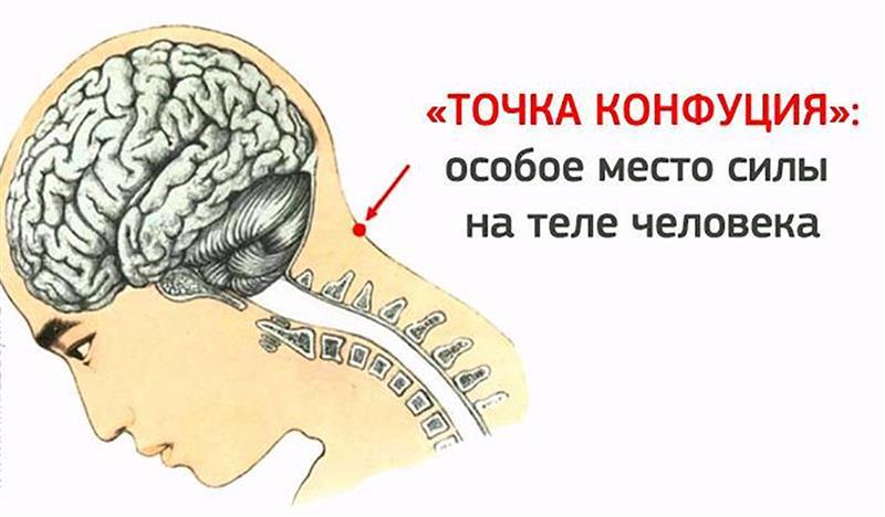 Где на теле точка Конфуция и её значимость для здоровья