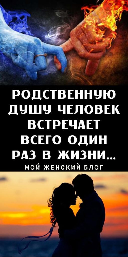 Родственную душу человек встречает всего один раз в жизни…