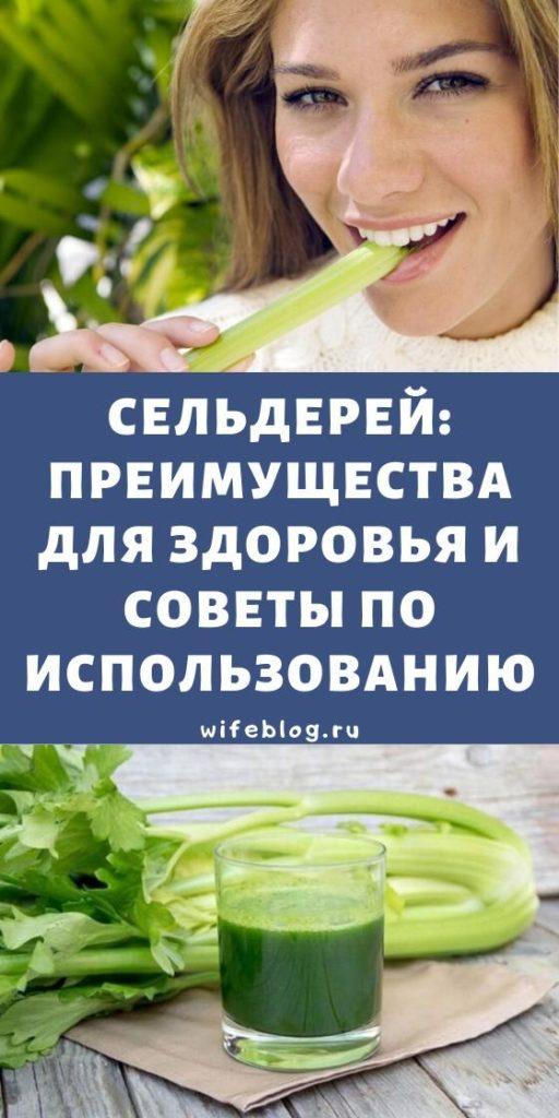 Сельдерей: преимущества для здоровья и советы по использованию
